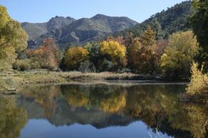 landscape lake arizona